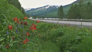 Alaskan Vacation Highway