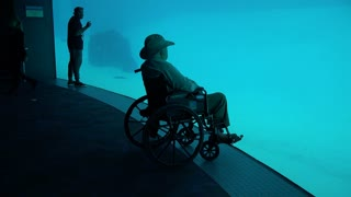 Aquarium man sitting in wheelchair