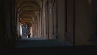 Archway Runner 5