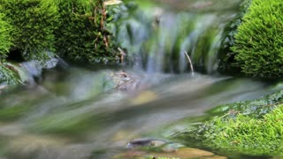 Artistic time-lapse water stream with zoom 1
