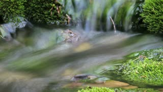 Artistic time-lapse water stream with zoom 2