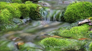 Artistic time-lapse water stream