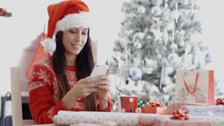 Attractive woman checking for Christmas messages
