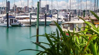 Auckland Marina Time Lapse