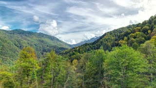 Autumn in High Mountains. Sochi, Russia. Krasnaya Polyana timelapse hyperlapse. View to trees and cloudy sky