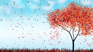 Hd 4k Falling Leaves Overlays Videos Royalty Free Falling Leaves Overlays Stock Footage Clips Motion Backgrounds And After Effects Templates Storyblocks