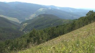 Backcountry Hillside 2