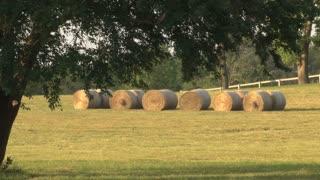 Bales of Hay 2