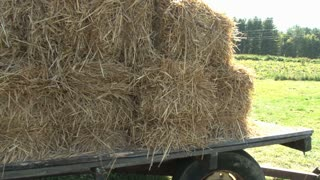 Bales of Hay by Pumpkin Patch Pan Up