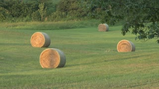 Bales of Hay Close Up 2