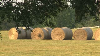 Bales of Hay Close Up