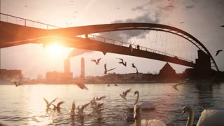 beautiful romantic sunset. swarm of birds. bridge. lake pond. slow motion