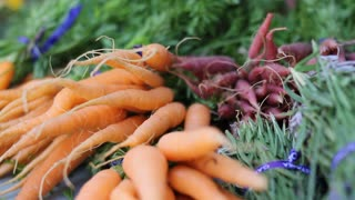 Beauty Shot Of  Fresh Carrots And Herbs