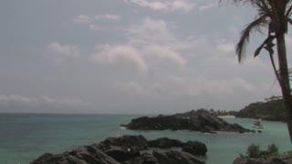 Bermuda 31