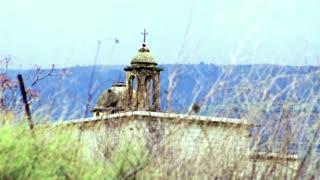 Bird On Barren Twig With Ruins In Background