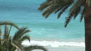 Blue Ocean Surf Framed by Palm Trees