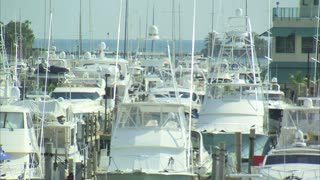 Boats at Marina in Miami
