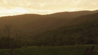 Bright Sunny Glow Hillside