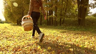 Brunette woman walking through autumn forest holding a picnic basket. Warm sunny day. Slow motion steadicam clip