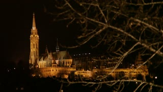 Budapest Cathedral Through Trees