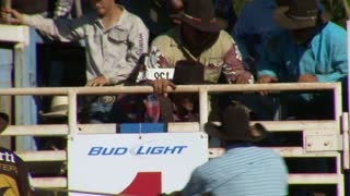 Bull Riding In Rodeo