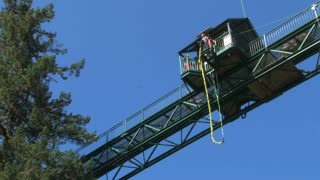 Bungee Jump From Forest Tower