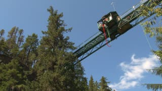 Bungee Jumping Off Forest Tower