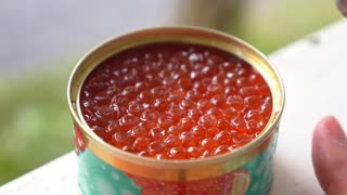 Canned Salmon Caviar with Spoon Close-up. Slow Motion.
