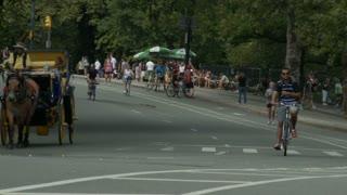 Central Park Road Timelapse