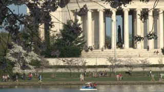 Cherry blossoms and Thomas Jefferson Memorial 3