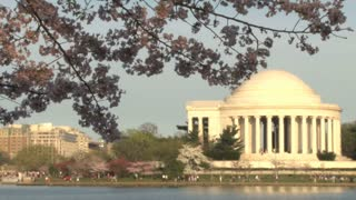 Cherry blossoms and Thomas Jefferson Memorial 6