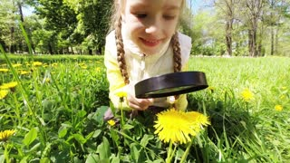 Child with magnifying glass looks at dandelions