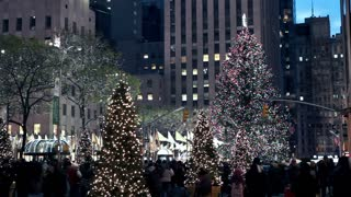 Christmas Tree and Lights in New York City 3