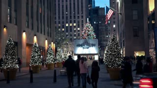 Christmas Tree and Lights in New York City