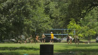 City Park Volleyball Game