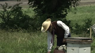 civil war escape slave sneaks past beekeeper
