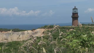 Clifftop Lighthouse Framed by Swaying Plants