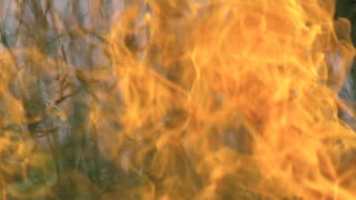 close up of intense fire burning in tall grass
