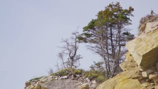 Close Up of Trees Atop Rocky Cliff