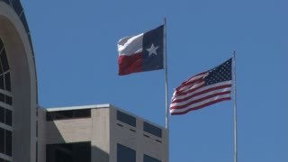 Close Up Texas Flag