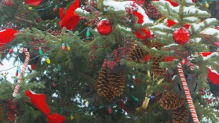 Closeup Christmas Tree in Snow 3