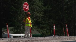 Construction Worker Holding Stop Sign