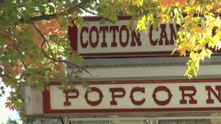 Cotton Candy Stand Through The Leaves