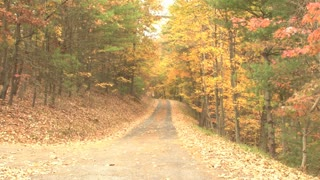 Country Backroads Zoom