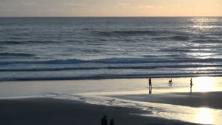 Couple and Dog on Cannon Beach at Sunset