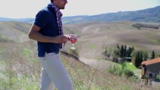 Couple drinking wine on picnic, crane shot