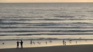 Couple Standing Near Birds on Shore at Cannon Beach