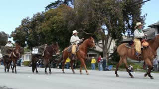 Cowboys With Horses And Mules In Parade