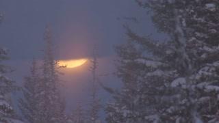 Creepy Moon Rising