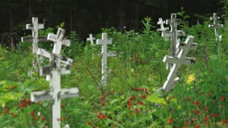 Crosses In Field